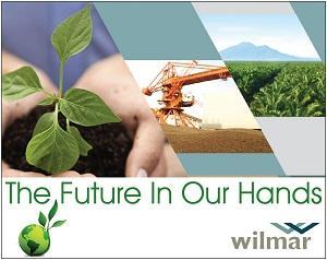 Go green Wilmar